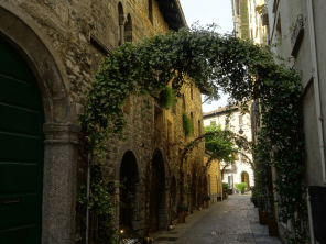 Via Olginati