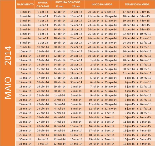 Tabela Maio