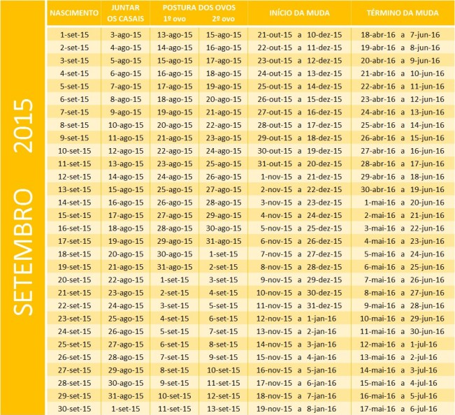 Tabela de set 2015
