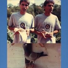 1996 Apenas quatro Pombos