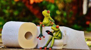 Como descartar papel higiênico usado