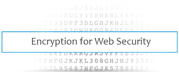 Encryption for Web Security