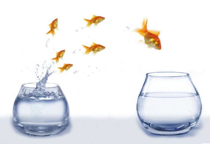 El liderazgo implica una visión de futuro y unos seguidores que la compartan