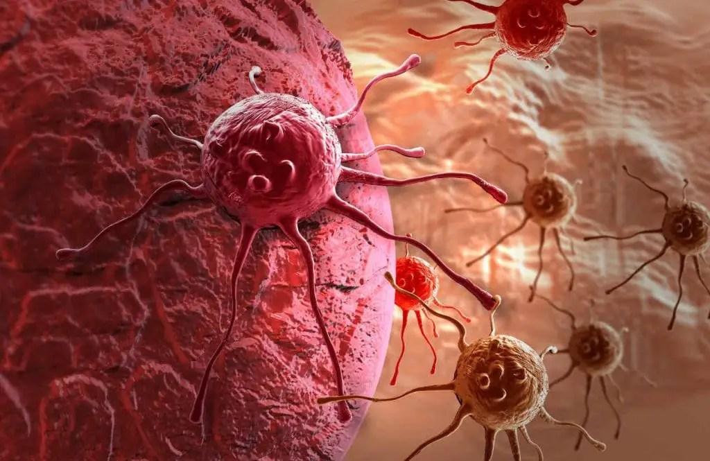 Resultado de imagen de cancer