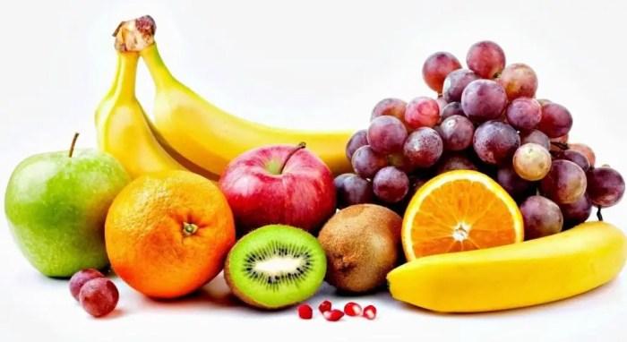 El agua, las vitaminas y los minerales tambien son absorbidos por el intestino delgado