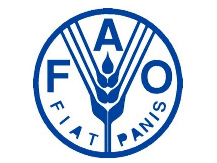 Simbolo de la organizacion de las naciones unidas encargada de la alimentacion y la lucha contra la pobreza
