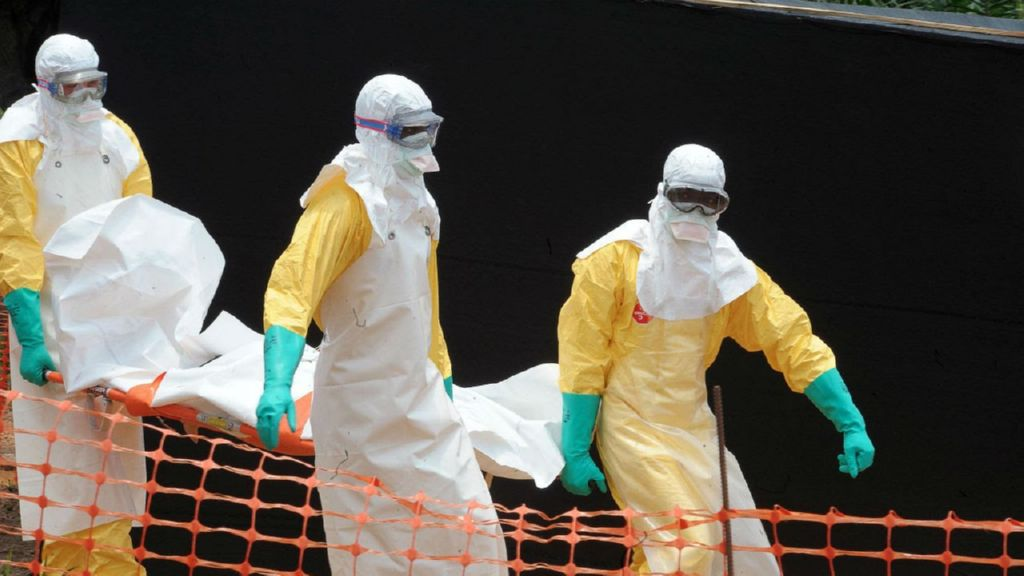 Pandemia Historia