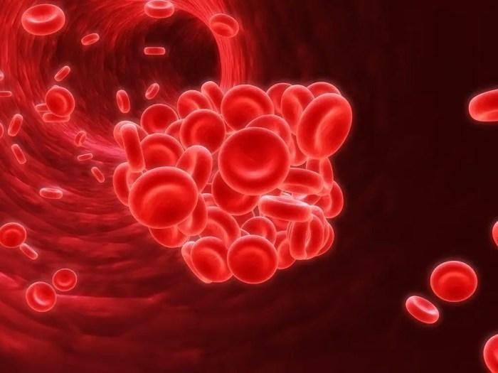 Altos niveles de globulos rojos en sangre pueden ser perjudiciales