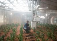 cultivos en marte