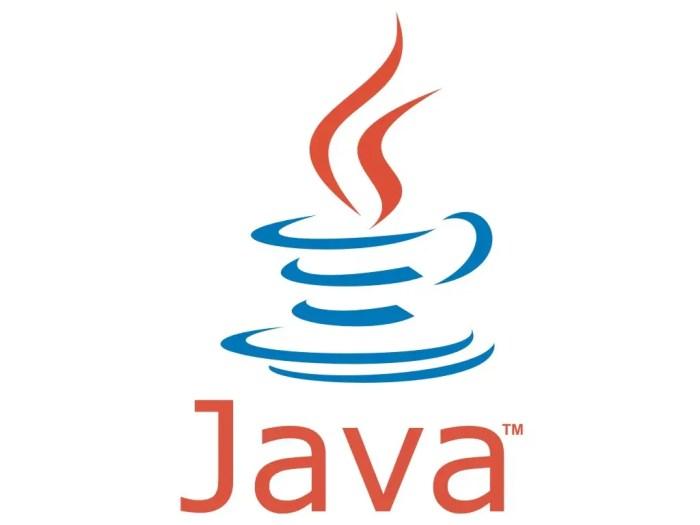 Java es el lenguaje de programación más popular del mundo.