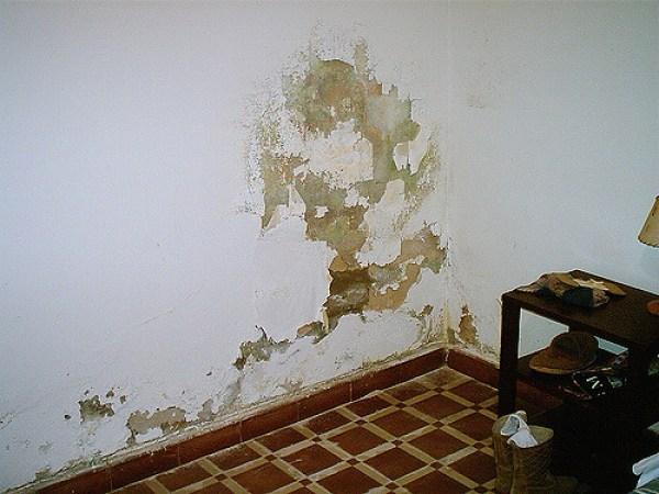 Eliminar humedad de una habitaci n c mo lo puedo hacer - Como quitar la humedad de una habitacion ...