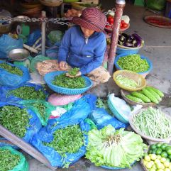 A lesson in Vietnamese herbs at Hoi An Market