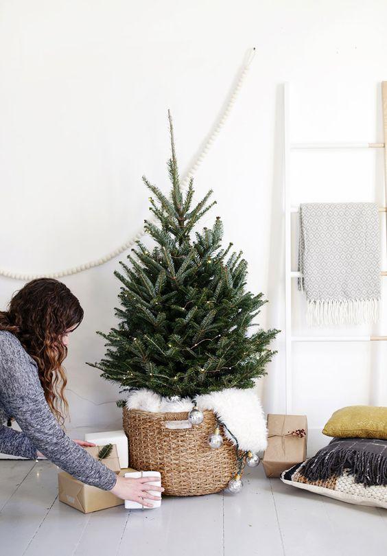 small christmas trees the