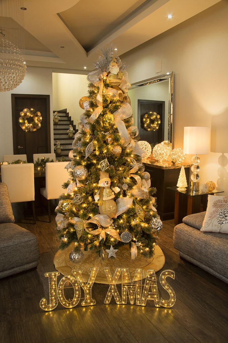 iluminacion para exterior en navidad 2018 5