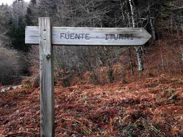 cartel-ruta-selva-irati-ochagavia-navarra