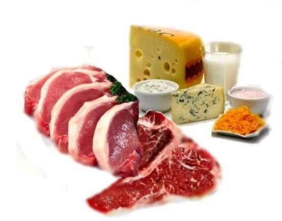 Caracteristicas de las proteinas