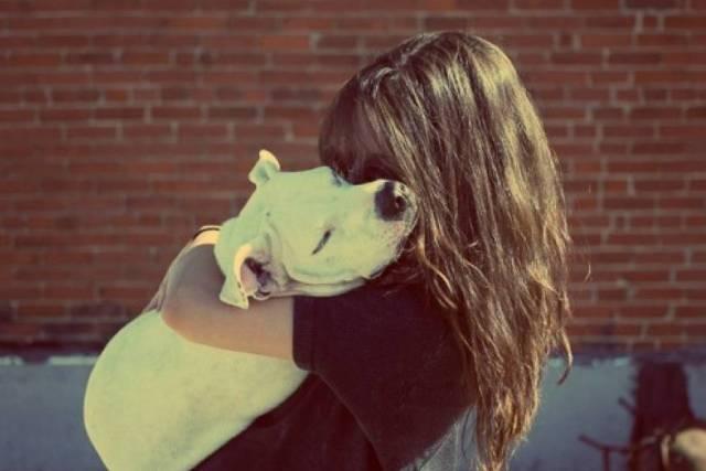Perder una mascota duele más de lo que la gente piensa