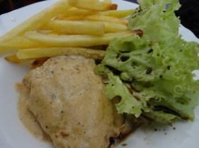 Frango com creme, fritas e salada