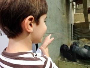 Alemanha, Stuttgart, Zoológico, Jardim Botânico, Crianças, Wihelma - Foto Nathalia Molina @ComoViaja (36)