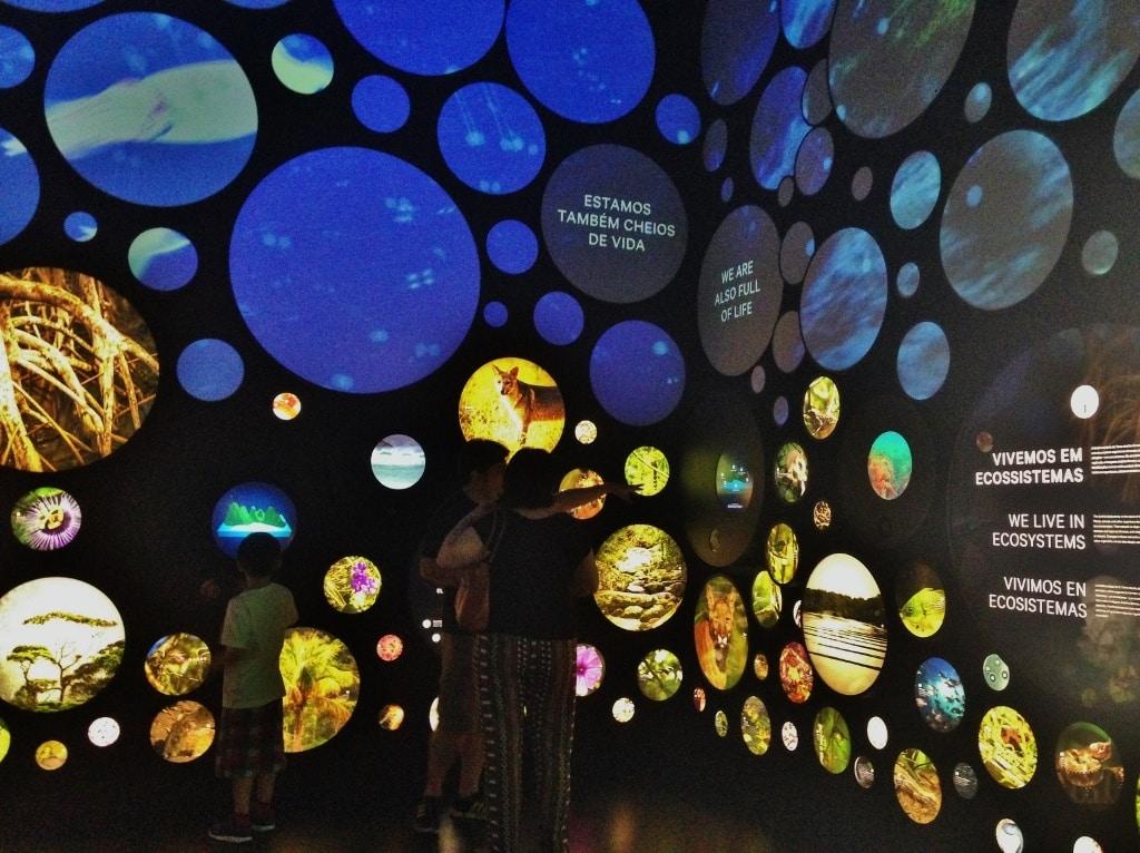 Ecossistemas-da-Terra-Museu-do-Amanhã-Rio-de-Janeiro-Foto-Nathalia-Molina-@ComoViaja