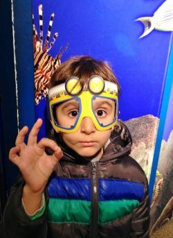 SeaLife AquaDom Berlim, Aquario Alemanha Viagem - Foto Nathalia Molina @ComoViaja (6) (654x900)
