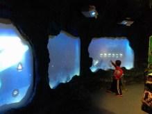 SeaLife Munique Aquario Alemanha Viagem - Foto Nathalia Molina @ComoViaja (21)