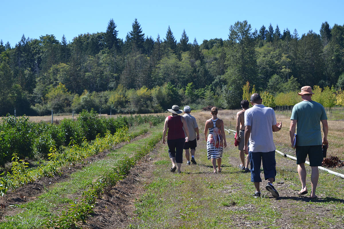 Comox Valley Community Created Agriculture Co-op