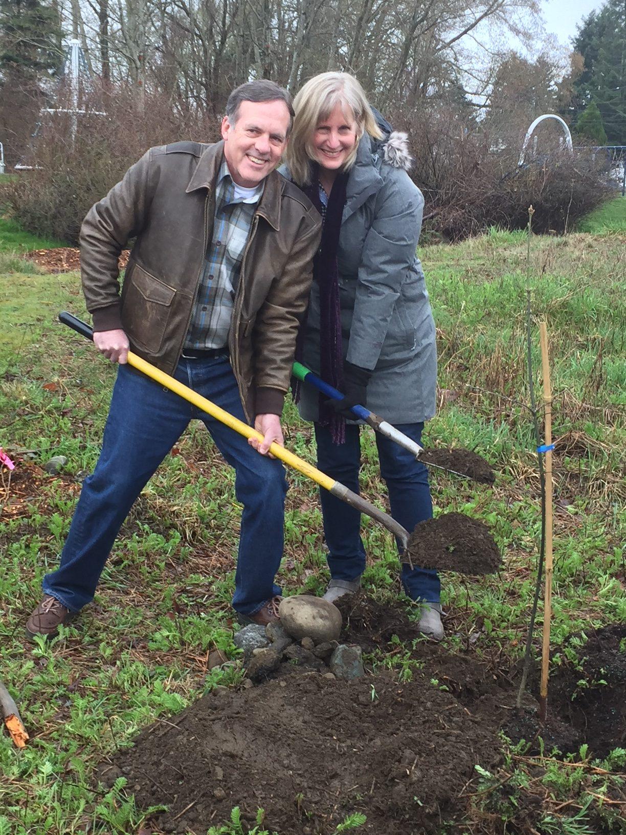 Planting Garry Oaks