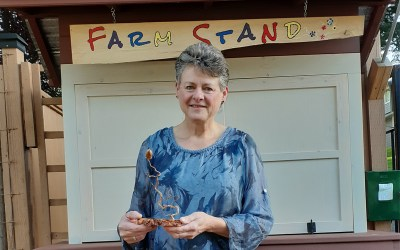 Darlene Berry – Outstanding Contributions 2020