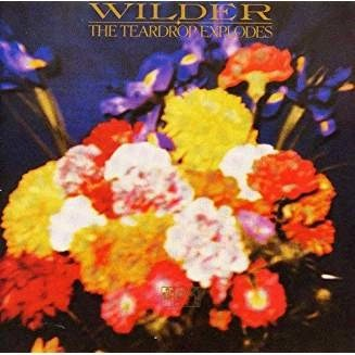 Teardrop Explodes – Wilder (8 Bonus tracks)