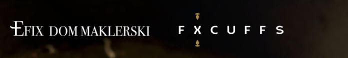 fx efix