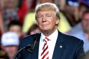 Republikanie szykują 4-dniowy konwent dla Trumpa. Dolar słabnie względem euro