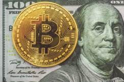 demokratai bitcoin