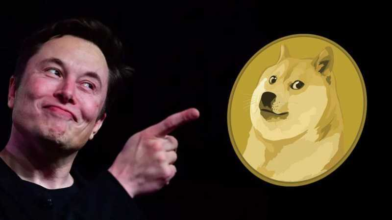 """Musk condemns the Bitcoin network. """"Dogefather"""" will create its own  cryptocurrency?'Dogefather' Elon Musk"""
