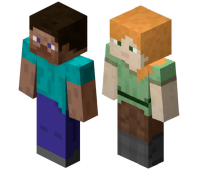Custom Skins for Minecraft: Windows 10 Edition