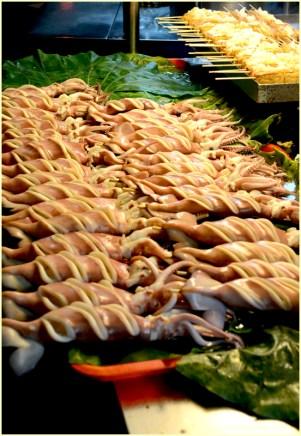 Swirly squid