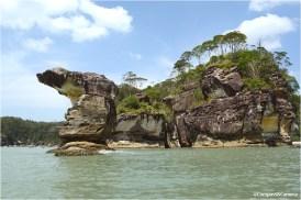 The cobra head sea stack