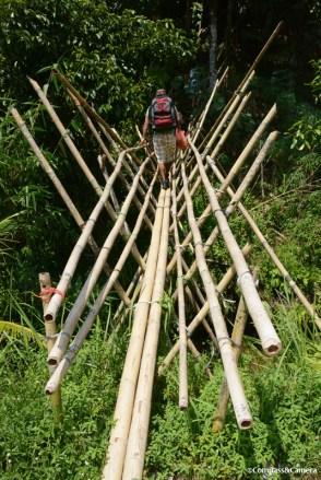Bridge to Saloma's place