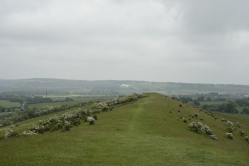 View from Ivinghoe Beacon
