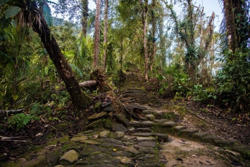 The Lost City steps