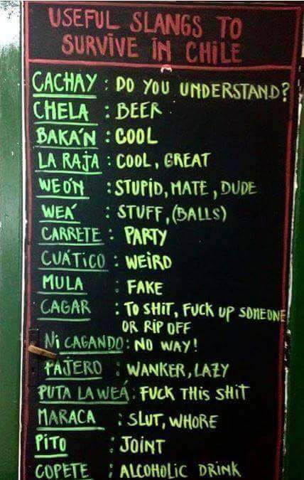 Useful Chilean words