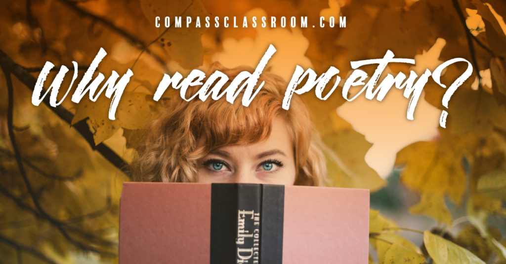 Why Read Poetry
