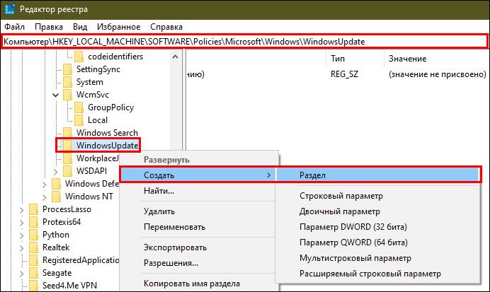 Configurați actualizarea automată în editorul de registry
