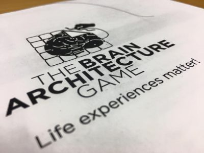 Brain Architecture Game