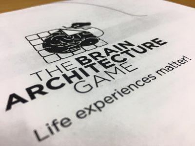 Brain Architecture Game