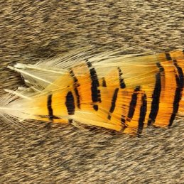 Nature's Spirit Golden Pheasant Tippet Assortment