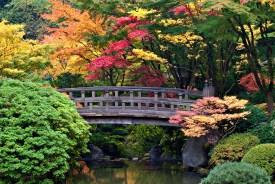 Japanese Garden ©Hudson Henry Photography