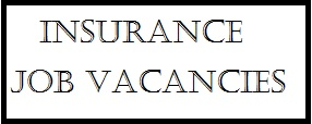 How to Apply for 650 Job Vacancies @  Ensure Insurance Plc. 2017