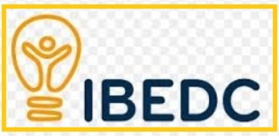 Ibadan Electricity Distribution Company (IBEDC) Plc Recruiting Regional Revenue Protection Officer
