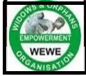 Job Vacancy: Senior Finance Officer @ Widows & Orphans Empowerment Organisation (WEWE) – Abuja